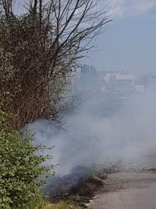 Cerveteri, incendio in zona Cerqueta