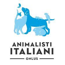 Prosegue la campagna contro l'abbandono 'Animals Lives Matter'