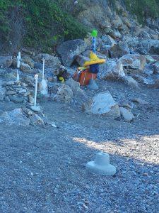 Guardia Costiera sequestra attrezzature balneari sul litorale civitavecchiese