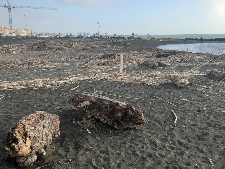 Ghera (Fdi): «Esondazione dei fossi a Ladispoli, la Regione assente»