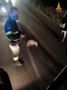 Cerveteri: auto si ribalta, feriti due ragazzi