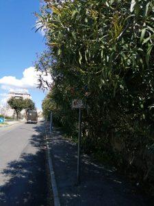 Via Carlo Fontana, residenti esasperati