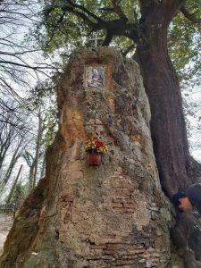La Madonna del Sasso al faggeto restaurata dall'artista tolfetana Silvia Di Silvestro