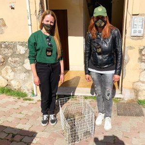 Sequestrati conigli, tartarughe, cani e gatti: erano detenuti in pessime condizioni igieniche