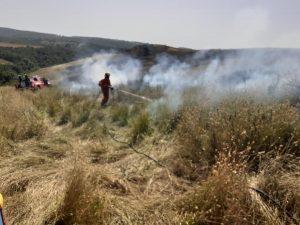 Tredici ettari di sterpaglie in fiamme all'Ancarano: lungo lavoro per vigili del fuoco, Aeopc, e forestali